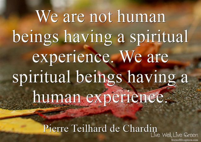 We are not human beings having a spiritual experience. We are spiritual beings having a human experience. -Pierre Teilhard de Chardin
