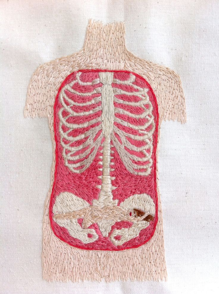 you think it's just a rib cage, but look closer ... just wish it wasn't sexualized. makes it difficult for me to enjoy the incongruity.: Anatomy Crosses Stitches, Berta Salinas, Series Caníbal, Describ Embroidery, Anatomical Anatomy, Http Www Bertasalina, Ribs Cages, Serie Caníbal, Bones Daddy