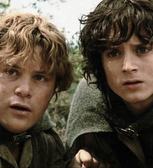 the lord of the rings, sam and frodo #bromance