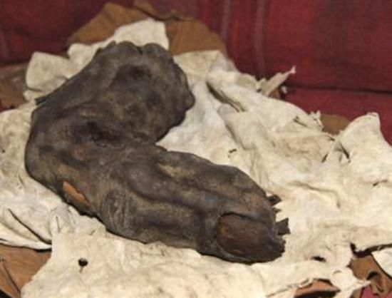 """Have a look at this giant mummified finger… it's 38 centimeters (13.8 inches) long and it was discovered in Egypt. Now just imagine, according to official calculations, the human (or alien) who owned the finger must have been at least 20.7 feet or 6.3 meters.  What's the story behind the giant finger you ask, well information is still scarce, but what's certain is the fact that this amazing discovery was made in 1988, in Egypt by """"renown"""" family of grave robbers."""