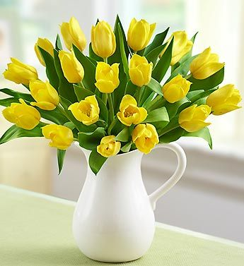 Beautiful blooming tulips are a sure sign that Spring has sprung. This hand-designed arrangement of bright yellow tulips -- a traditional symbol of cheerfulness and sunshine -- arrives in our exclusive, reusable white ceramic pitcher to serve up lasting smiles for any Spring day.