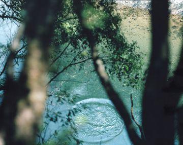 Risaku Suzuki - Stream of consciousness   Special Exhibitions   MIMOCA