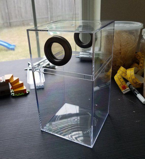 Jumping Spider Mantis Bug Enclosure 447 2 Grommets Style Etsy Jumping Spider Reptile Room Spider Baby