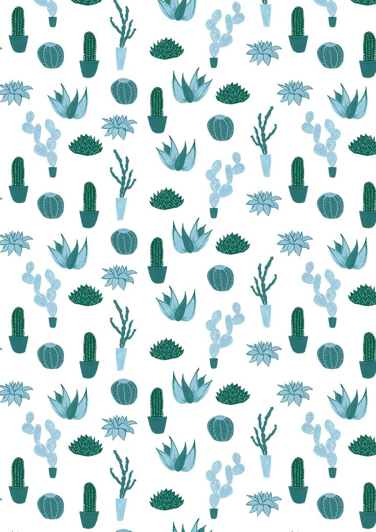 blue cacti / cactus / succulent surface pattern design painted with gouache