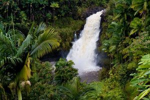 Where to dine in Hilo, Hawaii