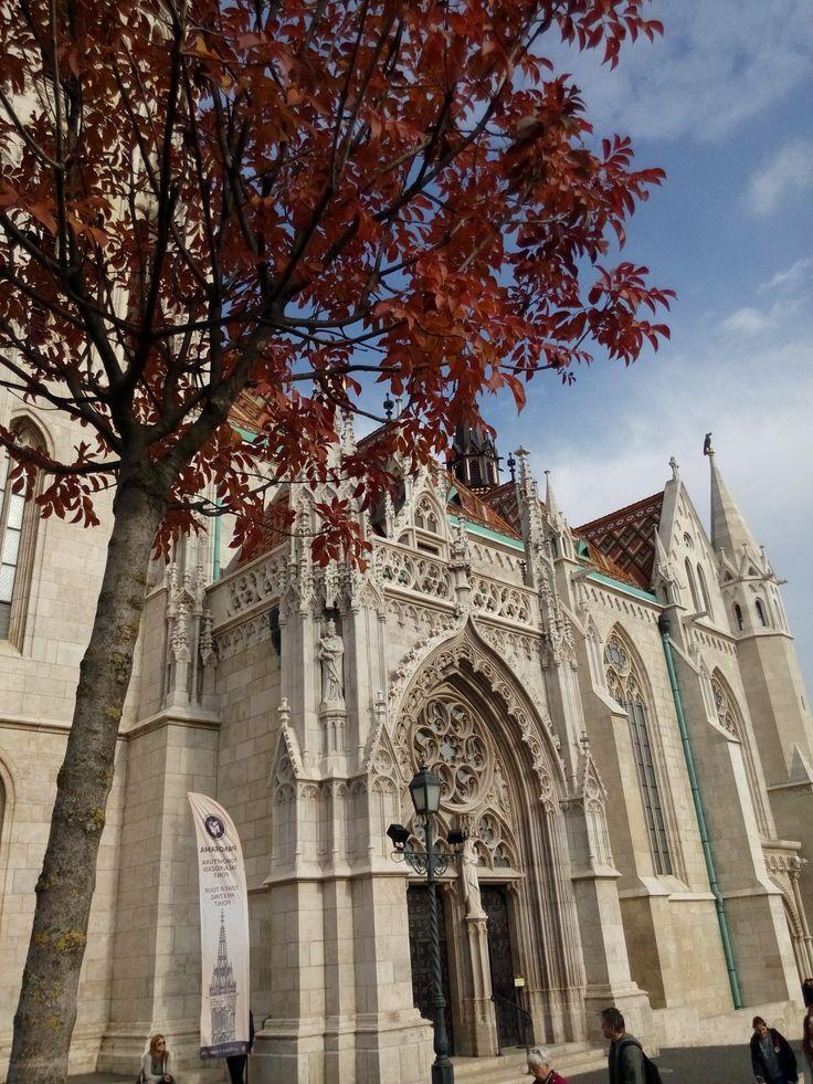 The Matthias Church.