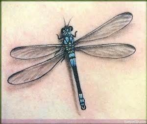 dragon fly tattoos designs - Yahoo! Image Search Results