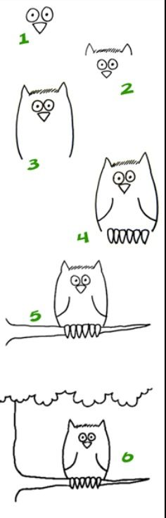 how to draw an owl realistically