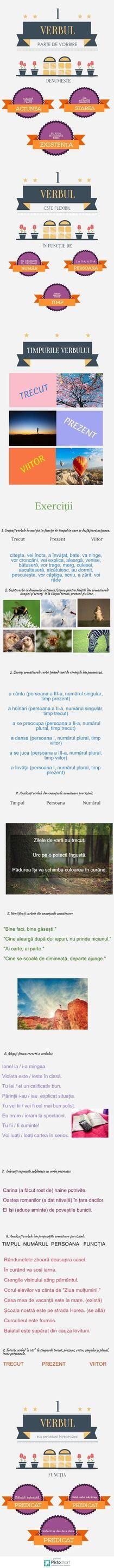 verbul | Piktochart Infographic Editor