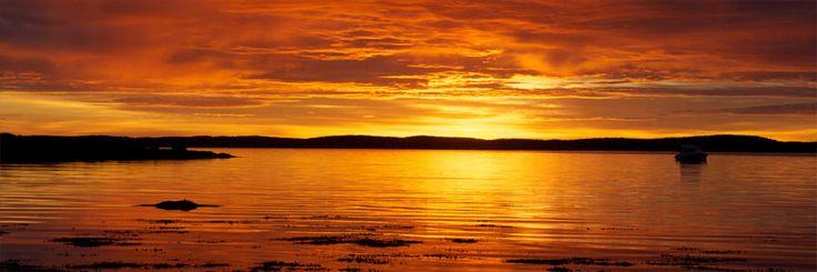 Acadia Sunrise - Bar Harbor, Maine - Panoramic Wall Canvas