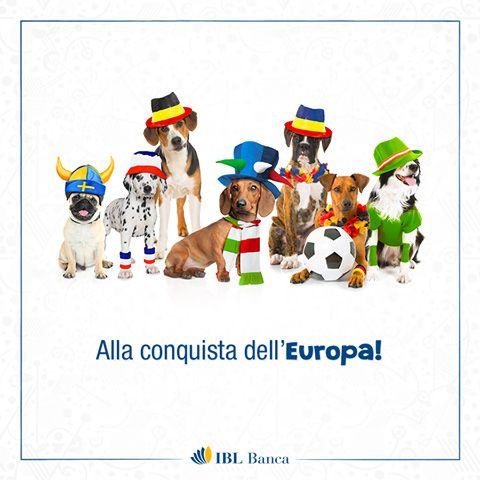 Anche noi incitiamo la nostra Italia, che siamo piccoli, simpatici bassi e... vincenti, come sempre! #bassoèmeglio #tifodaanimali  -