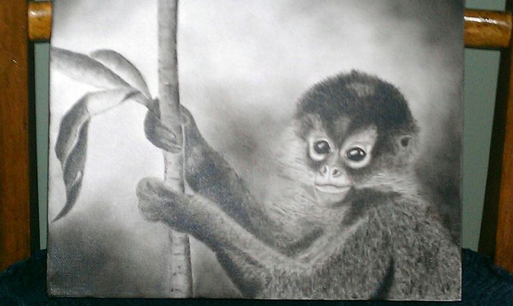 Wild monkey in Nicaragua found in the jungle. He was holding onto a banana leaf. He was quite tame even though he lived in the wilderness. My hubby took the pic and I painted it in sepia tone.