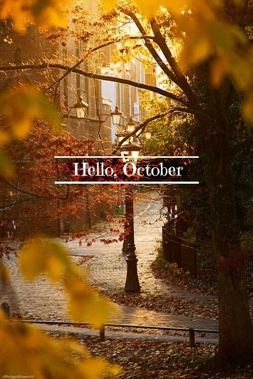 Delightful Hello, October Via Riches For Rags