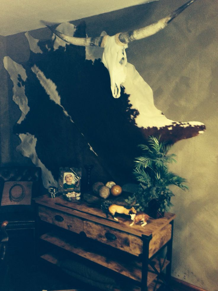 Cowhide and longhorn skull hung on wall in the western bedroom .
