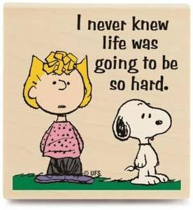 I never knew life was going to be so hard! ...You can say that again! # Snoopy…