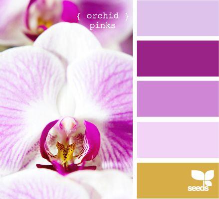 M s de 1000 ideas sobre colores que combinan en pinterest - Que color combina con el morado ...