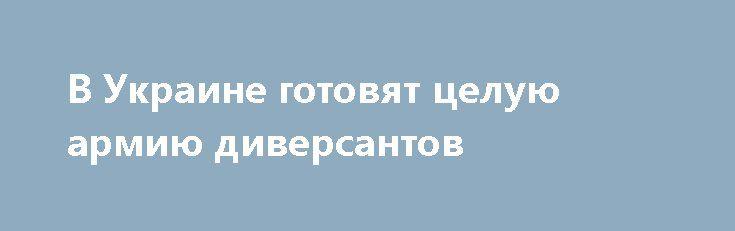 В Украине готовят целую армию диверсантов http://rusdozor.ru/2017/03/19/v-ukraine-gotovyat-celuyu-armiyu-diversantov/  Министерство госбезопасности ЛНР располагает данными о том, что исполнителями убийства Героя ДНР полковника Михаила Толстых, погибшего 8 февраля в Донецке в результате теракта, были военнослужащие восьмого полка Сил специальных операций ВСУ.Ранее сегодня министр сообщал, что непосредственным исполнителем убийства начальника управления ...