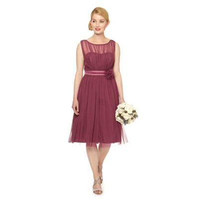 Debut Dark rose mesh corsage dress- at Debenhams.com