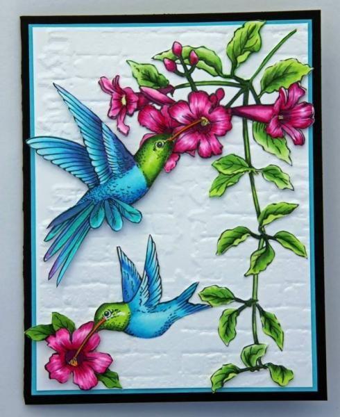 250 Best Hummingbirds Images On Pinterest Beautiful