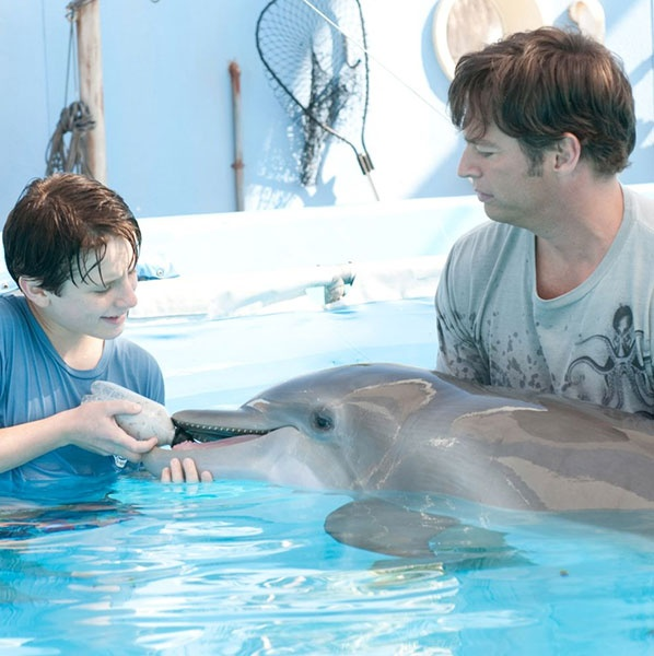 'Dolphin Tale'                                  The Story: How can anyone resist dolphins? Harry Connick, Jr., Ashley Judd, Morgan Freeman, Kris Kristofferson and Nathan Gamble star in this heartwarming family tale inspired by an amazing true story. After a young dolphin is caught in a crab trap, a dedicated marine biologist, a brilliant prosthetics doctor and a devoted young boy fight to save the creature by devising an incredible prosthetic tail.