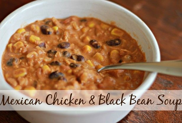 Mexican Chicken and Black Bean Soup for the Slow Cooker   TheMarathonMomcom