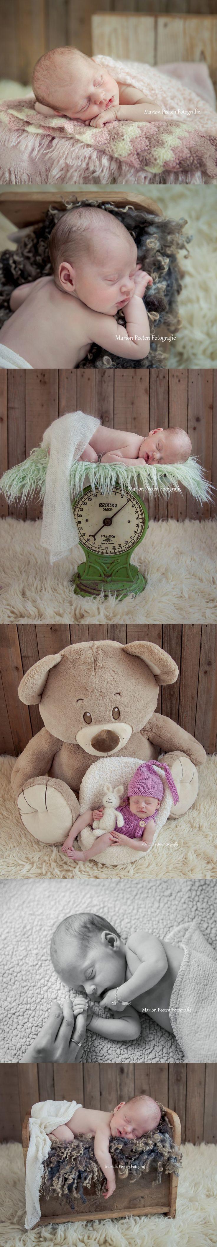 newborns by marion peeten#newborns by marion peeten photography#studio photography#love#newborn love#newborn with huge bear#