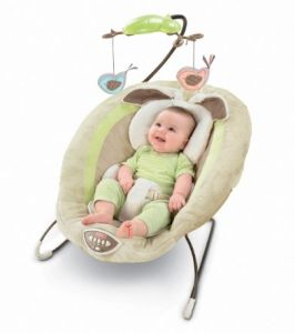 Fisher-Price Deluxe Bouncer (~$56): A tried and true crowd favorite. Read more here: http://www.lucieslist.com/baby-registry-basics/best-swings-and-bouncers/#FisherPrice