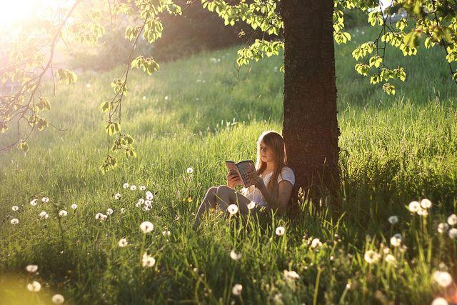 The reading tree.