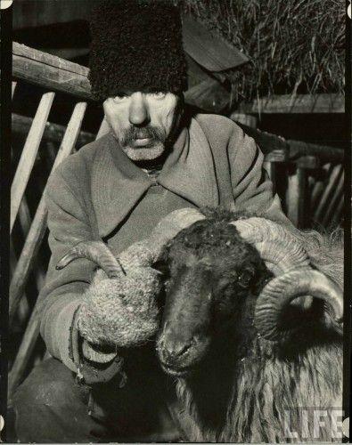 Margaret Bourke White, Basarabia Baciul moldovean în 1940