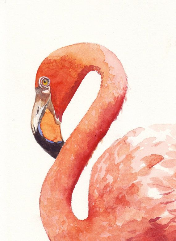Flamingo Painting   print of watercolor painting 5 by Splodgepodge, $15.00
