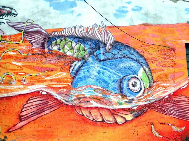Fish graffiti by binho