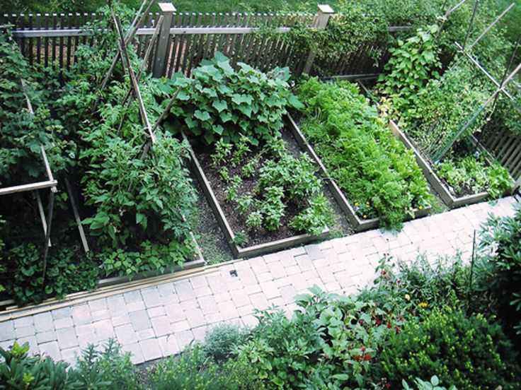 Vegetable Garden Ideas For Small Gardens vegetable garden designs - creditrestore