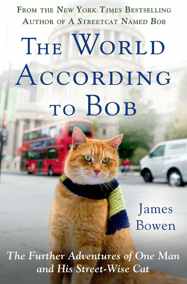 The World According to Bob: The Further Adventures of One Man and His Streetwise Cat  by James Bowen http://www.amazon.com/exec/obidos/ASIN/B00H6ETEH8/hpb2-20/ASIN/B00H6ETEH8 Loving this story. - I've just finished this sequel to Mr. Bowen's first book on Bob and find it every bit as moving as the first one. - Great Book very interesting story.