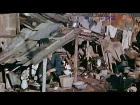Белый свет. Черный дождь. Разрушение Хиросимы и Нагасаки