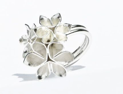 Google Image Result for http://stylesociety.co.za/wp-content/uploads/2011/02/Silver-Star-Flower-ing-by-Emma.jpg