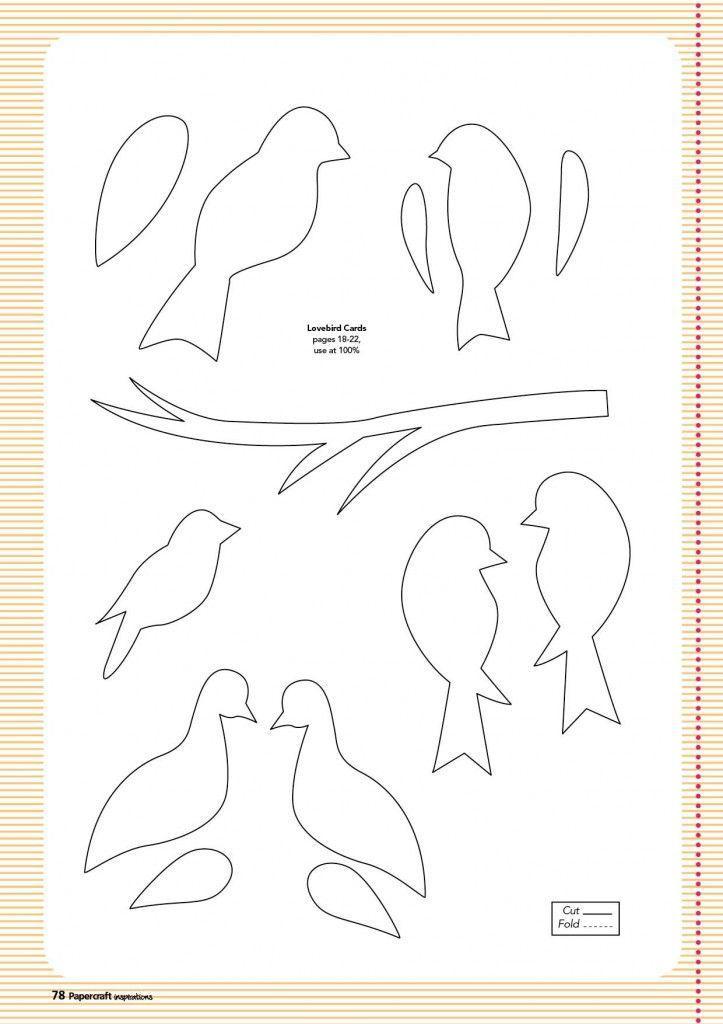 Druckvorlage Vogel Drucken Jpg 3 508 2 480 4