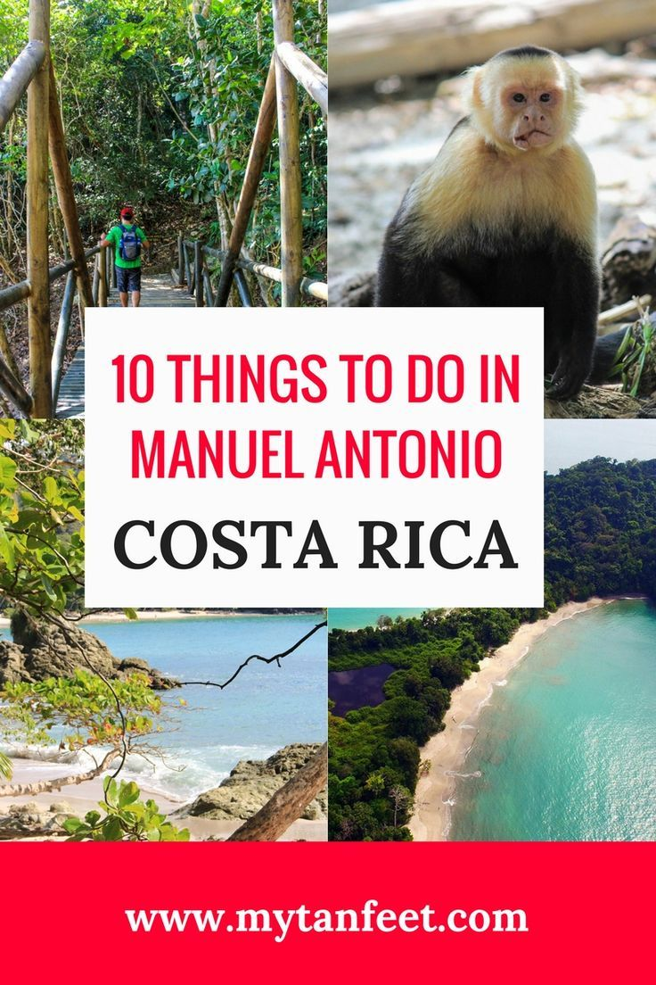 10 awesome things to do in Manuel Antonio, Costa Rica that you can't do anywhere else in the country. Click through to read more: https://mytanfeet.com/activities/things-to-do-in-manuel-antonio/ Costa Rica | Costa Rica travel blog | Costa Rica travel tips