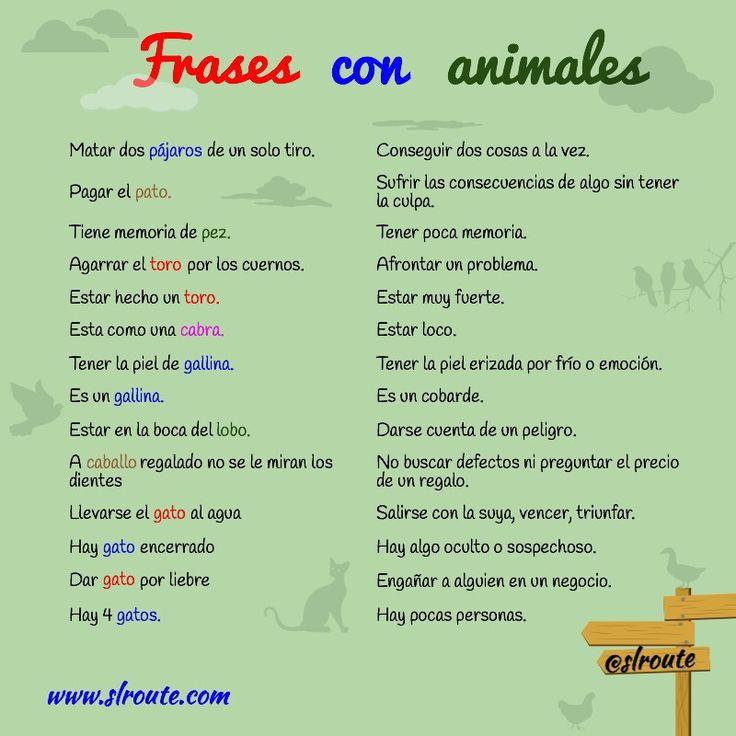 """Frases hechas con animales: en Perú se dice """"tomar el toro por las astas,"""" """"pagar pato"""" (sin el artículo), y """"tener memoria de pollo,"""" pero es la misma idea! #Spanish sayings #Spanish phrases #dichos"""