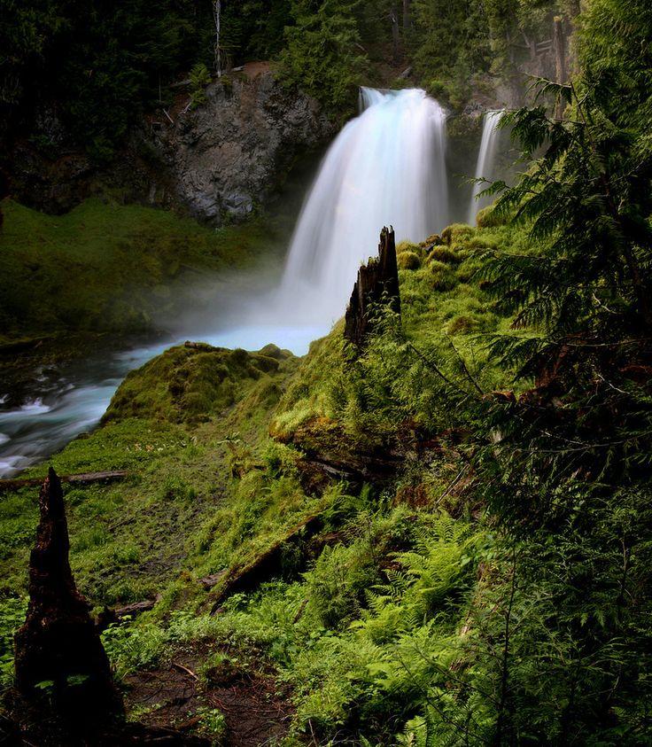 Sahalie Falls on the McKenzie River, Oregon