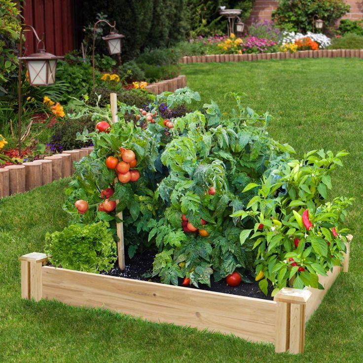 Small Raised Garden: Greenes Fence 4 Ft. X 4 Ft. X 7 In. Original Cedar Raised