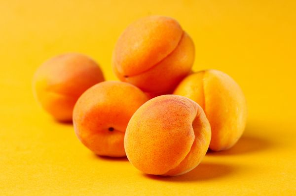 images of apricot recipes | ... apricots all summer long with these innovative apricot recipes