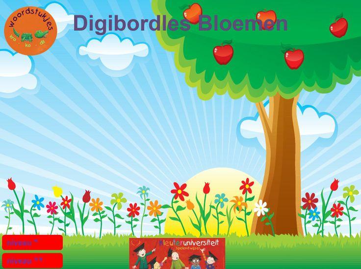 *▶ Digibordles: bloemen