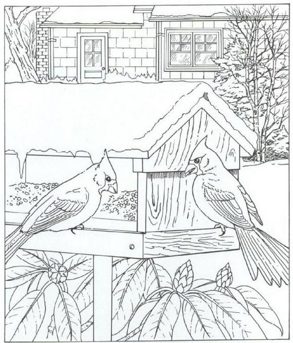 рисунок птицы на кормушке зимой карандашом начинается сам