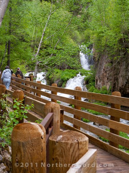 The approach to Roughlock Falls in Spearfish Canyon, South Dakota. The falls are a highlight of the Northern Black Hills. I was there in late spring, when the daily thunderstorms powered the churning falls.