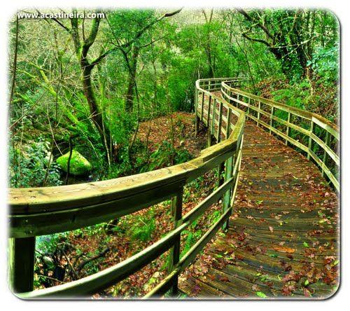 Ruta de las pasarelas, un sendero de 1,8km entre el bosque y que 'vuela' sobre el cañón del Mao, una de las rutas mas espectaculares de la Ribeira Sacra, y está a 20 minutos de nuestra casa rural