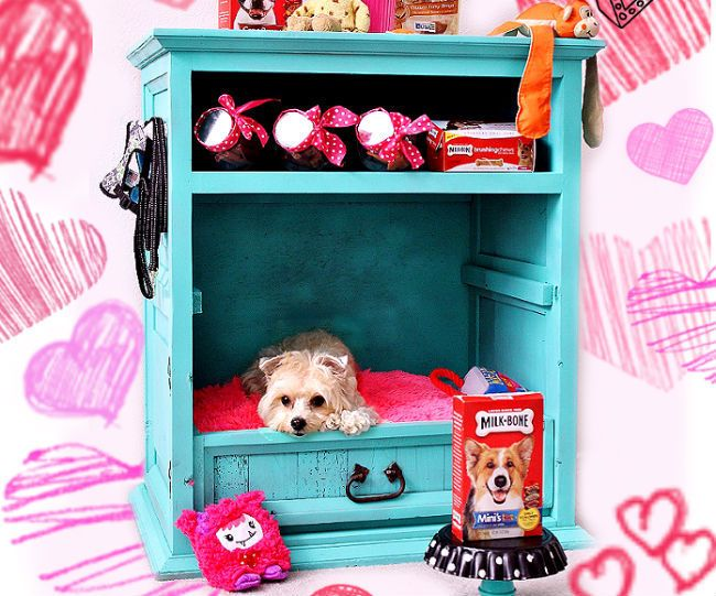Whether you've got the type of personality that likes to keep you busy, or you prefer to lounge around the house in your PJs, as long as you love dogs we've got the DIY projects for you. These can all be done from the comfort of your home (yes, we mean in front of the television) or in a designated workspace.