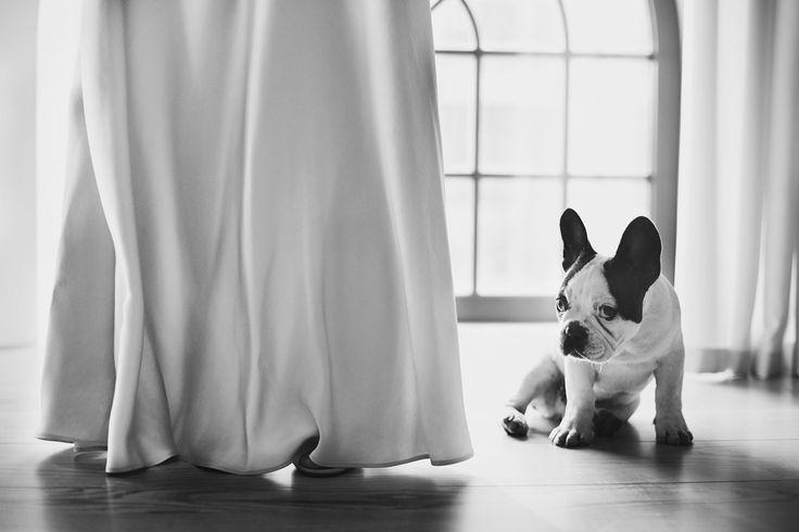 Foto del matrimonio di febbraio 20 di Anna Płóciennik sul MyWed