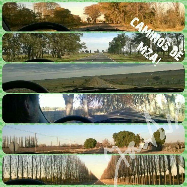 Caminos de Mendoza, Argentina.