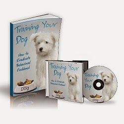 Here are some things that you will read about in this guide:  - How to stop your dog from biting  - How to stop them from howling and barking and what could happen if you don't  - How to stop them from being aggressive A happy dog means a happy owner and once they get attached to you, there is no turning back. Your dog will be your best friend and companion for life.