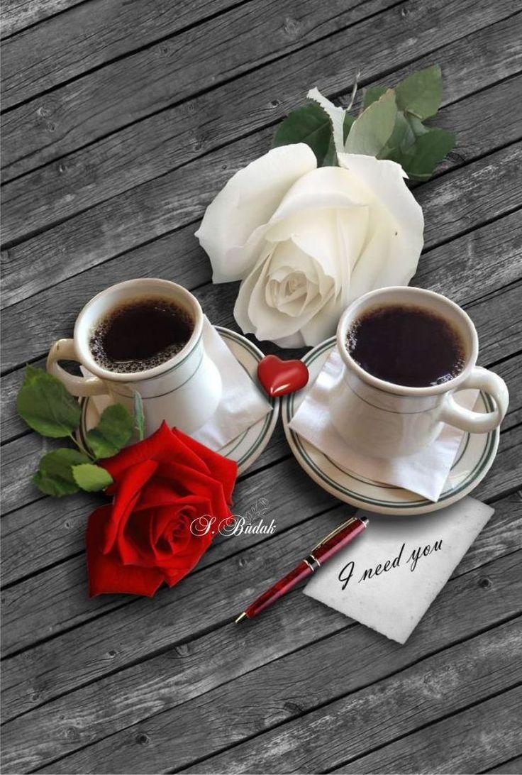 Роза открытки кофе доброе утро, картинки про анал